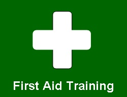 Emergency First Aid at Work plus forestry first aid training course